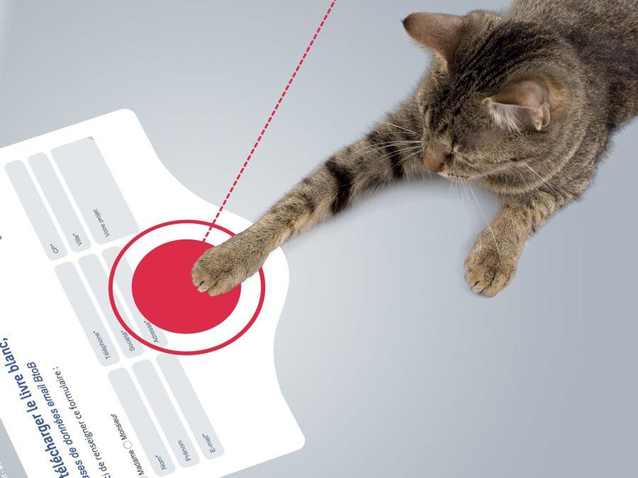 Landing page : maîtrisez les fondamentaux de sa conception graphique !
