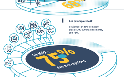 Base de données Sirene INSEE : que nous dit-elle des entreprises françaises ?